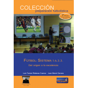 Football: System 1.4.3.3. From the origin to excellence