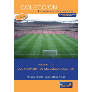 Ebook - Collective Game, Volume 2: The Fundamentals of Collective Game