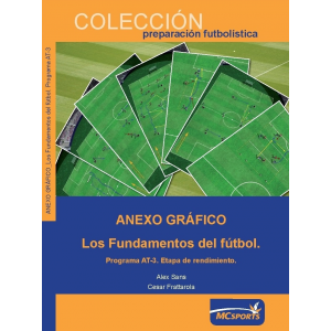 Anexo Gráfico Los Fundamentos del Fútbol. Programa AT-3. Etapa de Rendimiento.